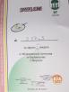 badminton 2017 dyplom